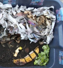 Free Composting Demo, Every Saturday